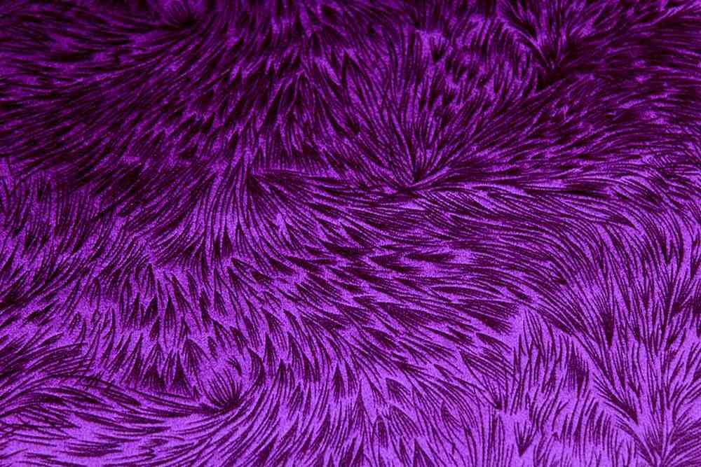 HUNTSVILLE / PLUM-27 / 100% Polyester